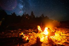 Tourists sit near the fire. In the wild area surrounded by pine trees under the starry sky. Image has some noise stock photography