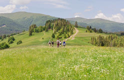 Tourists in small group in trekking travel on green hilly range of Carpathian mountains Stock Photo