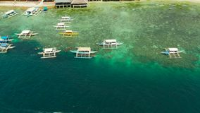 Tourists snorkeling in coral reef, Moalboal, Philippines. Tourists snorkeling over coral reef with clear blue ocean water, aerial view. People swim in the stock video