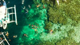 Tourists snorkeling in coral reef, Moalboal, Philippines. Tourists snorkeling over coral reef with clear blue ocean water, aerial view. Moalboal, Philippines stock footage