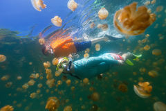 Tourists snorkeling in Jellyfish Lake Stock Image