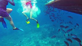 Tourists snorkle near a wooden boat among the of tropical fishes stock video