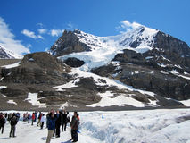 Tourists at Snow Dome Glacier, Canada. Tourists taking pictures at Snow Dome Glacier, Canada, winter time Royalty Free Stock Photo