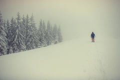 Tourists in the snowy mountains. Carpathians. Ukraine, Europe Stock Image