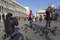 Tourists at St Mark Square. Stock Image