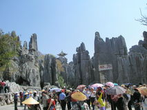 Tourists Stone Forest Stock Image