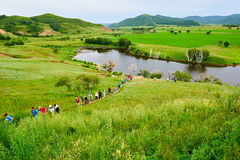 The tourists on the summer meadow. The photo was taken in huamugou national forest park Hexigten banner Chifeng city Nei Monggol Autonomous Region,China Royalty Free Stock Photos