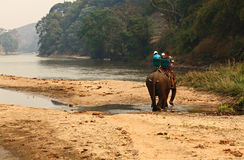 Tourists take elephant riding. Is crossing a river Stock Photography