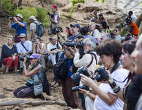 Tourists take pictures of preparation for bull jumping ceremony.Turmi, Omo Valley, Ethiopia. Royalty Free Stock Photography