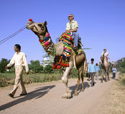 Tourists taking a camel ride Royalty Free Stock Photography