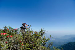 Tourists taking photos at Phu Luang Wildlife Sanctuary in Loei Royalty Free Stock Images