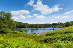 Tourists at Tarn Hows Lake District National Park England uk Royalty Free Stock Photo