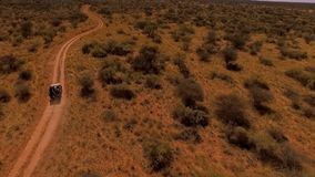 Tourists travel by car in the savannah of Namibia. stock footage