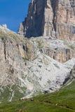 Tourists trek in the mountains Royalty Free Stock Photo