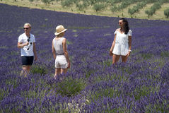 Tourists in Valensole Royalty Free Stock Images