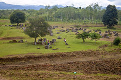 Tourists visit Plain of Jars Royalty Free Stock Photo