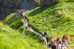 Tourists visiting Carrick-a-Rede Rope Bridge in County Antrim of Northern Ireland. Thousands of tourists visiting Carrick-a-Rede Rope Bridge in County Antrim of royalty free stock photo