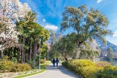 Free Tourists Visiting Ciani Park On The Long Coast Of Lake Lugano, Canton Of Ticino, Switzerland Stock Image - 142046911