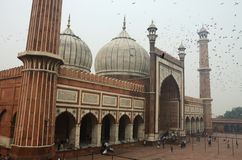 Tourists visiting  Masjid-i Jahan-Numa mosque,Old Delhi,India Stock Photography
