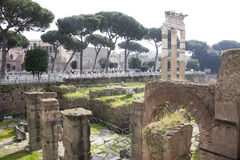 Tourists visiting the Roman Forum Stock Photos