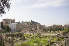 Tourists visiting the Roman Forum Stock Images