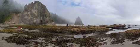 Tourists visiting Sea Sacks with Blue Sky and Clouds. This is the picture of touring hanging out at sea stacks at Rialto Beach, Olympic National Park, Washington Royalty Free Stock Photos