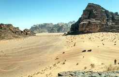 Tourists in Wadi Rum desert in Jordan. On a sunny day. It is an editorial image Royalty Free Stock Image