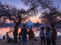 Tourists Wait for Sunrise Washington DC Cherry Blossom Festival Stock Photos