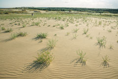 Tourists walk on the dunes Royalty Free Stock Photos