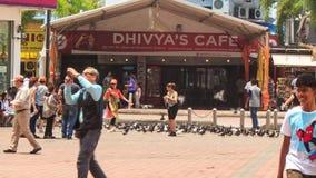 Tourists Walk Feed Pigeon Flock by Cafe near Batu Caves stock video