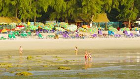 Tourists walk on a Kamala beach on low tide time with beach umbrellas shairs and beds on backgroun stock video footage