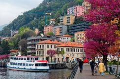 Tourists walk on a lakeside promenade under beautiful blossoming trees by Lake Como in Lombardy Italy. With ferry boats parking at the dock & colorful houses stock photography