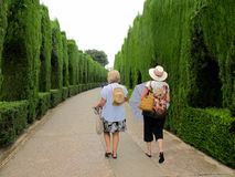 Tourists Walking - Alhambra Entrance. A couple of American female baby boomer tourists walk with purpose along the tailored hedge walkway into the Alhambra Stock Photography