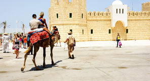 Tourists walking on camels in the port of La Goulette Royalty Free Stock Photo