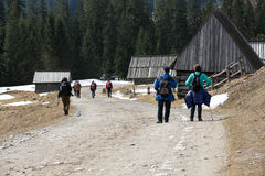 Tourists walking on hiking path in Chocholowska valley in spring season Royalty Free Stock Images
