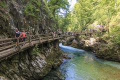 Tourists walking inside the Vintgar Gorge on a wooden path between Bled Lake and Bohinj Lake in Slovenia, Europe. Bled, Slovenia - June 3, 2017: Tourists Royalty Free Stock Image
