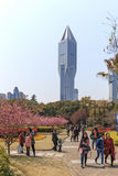 Tourists walking in People's Park one of the busiest in Shanghai. Tomorrow Square skyscraper on background. Shanghai, China - March 26, 2016: Tourists walking in Stock Photos