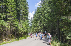 Tourists walking on road to Morskie Oko lake in High Tatra Mount Stock Photography