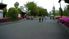 Tourists are walking in Sensoji Shrine. stock footage
