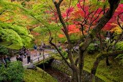 Tourists walking in Tofukuji temple in autumn season Royalty Free Stock Photos