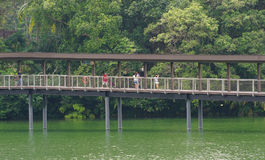 Tourists walking on wooden bridge Royalty Free Stock Photography