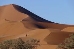 Tourists walks along the picturesque red-orange sand dunes, Sossousvlei plateau, Namib Naukluft National Park, Namibia. royalty free stock photos