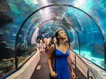 Tourists watch interesting fish in a huge Oceanarium. BARCELONA, SPAIN - September 16, 2011 royalty free stock photography