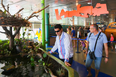 Tourists Watches Fishes at Aquarium Stock Photos