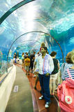 Tourists Watches Fishes at Aquarium - Barcelona, Spain Royalty Free Stock Photo