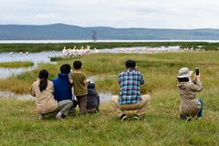 Tourists watching birds in a safari. A group of tourists are watching the birds near a pond quitely during a safari in a National Park in Kenya stock images