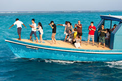 Tourists watching dolphins from a boat Stock Photos