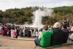 Tourists watching eruption of Lady Knox geyser Stock Image