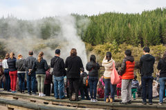 Tourists watching Lady Knox geyser eruption Stock Photos