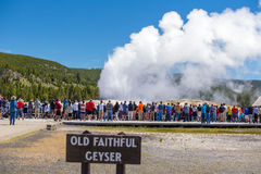 Tourists watching the Old Faithful erupting in Yellowstone Natio Stock Image